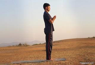 surya namaskar sun salutation basic to advance asana