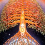 समय एक वृक्ष: ब्रह्म कुमारी