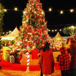 Christmas Facts You Would Love to Share & Enjoy
