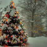 क्रिसमस के पर्व पर क्या है क्रिसमस ट्री का महत्त्व