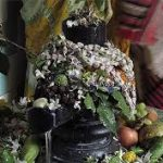 Maha Shivaratri : Significance of Fasting