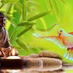 बौद्ध धर्म: जानिए क्या है बौद्ध दर्शन और बौद्ध संगीति